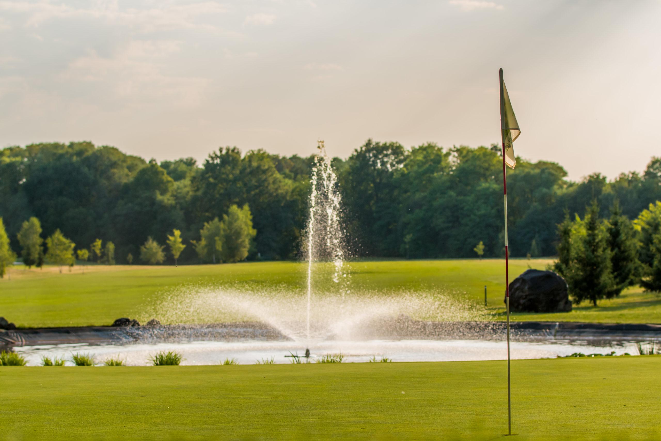 golf_02_0817_Dinamik