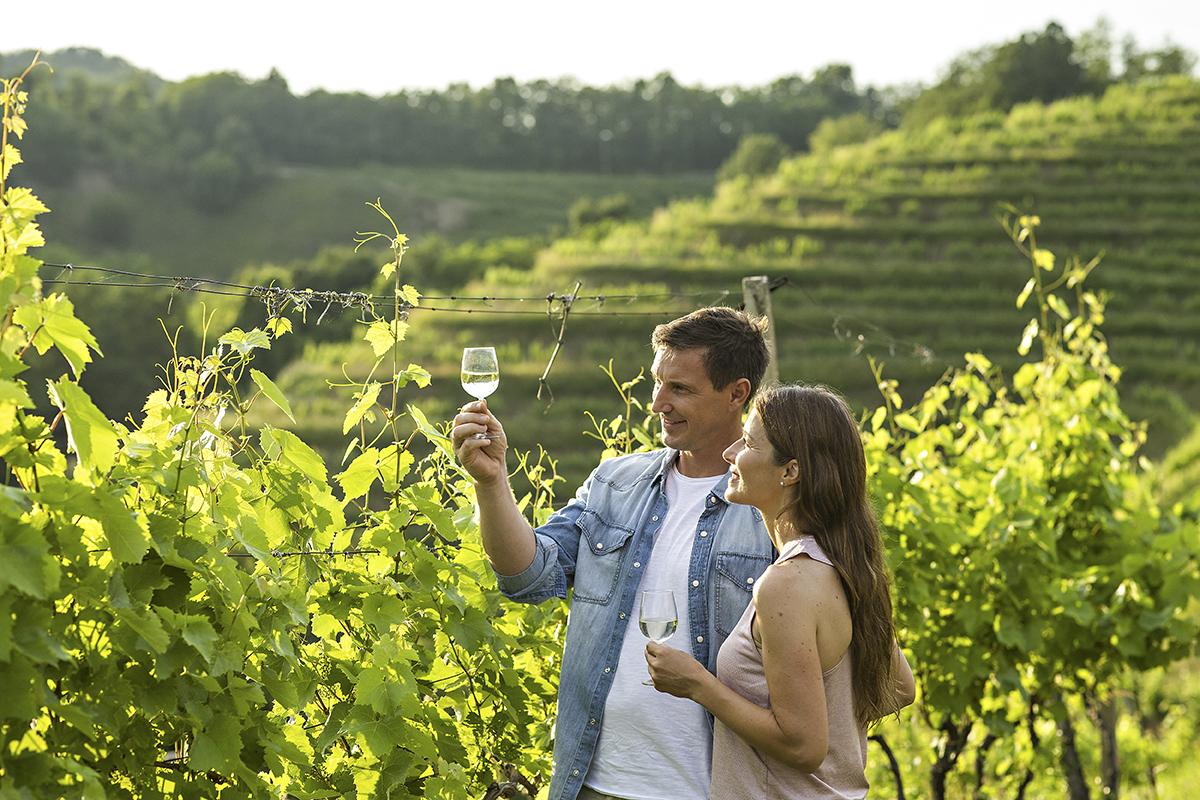 Couple_wineyard_Haloze_01_T3_fotoBD_2019_lowres