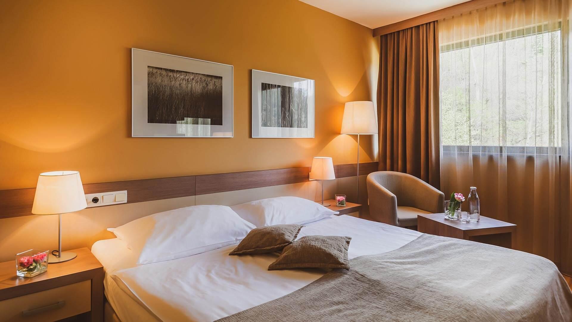 main-hotel-breza-terme-olimia-324