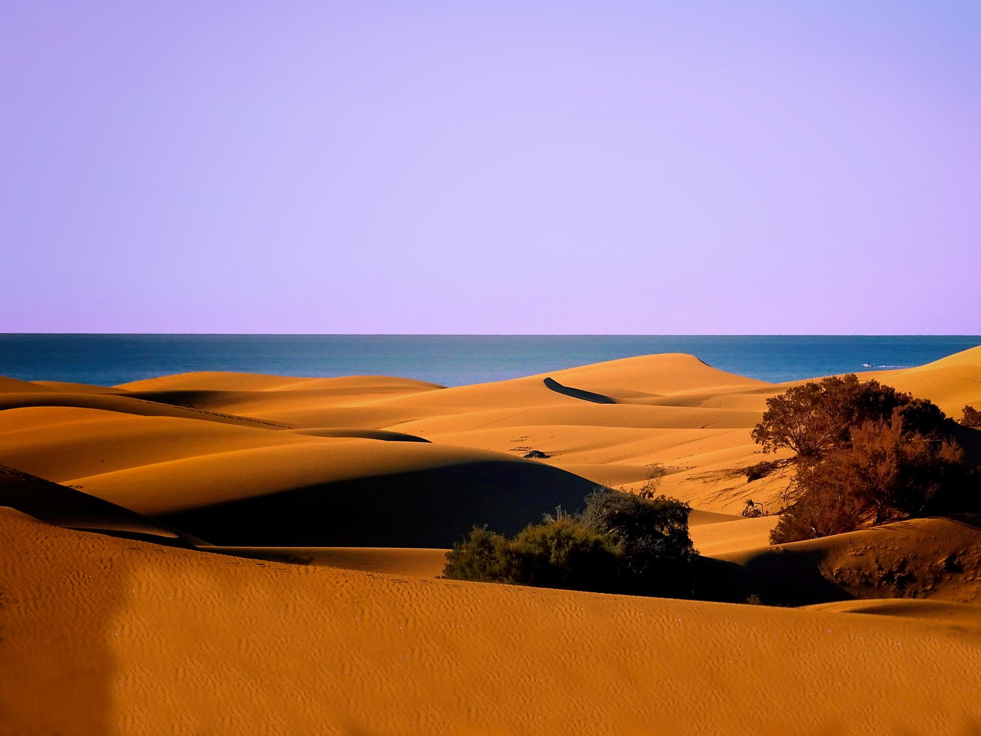 sand-dunes-3903300_1920